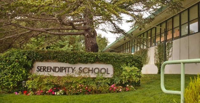 Welcome to Serendipity Elementary!