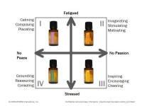 Essential Oils 101 Mood Matrix Smore Newsletters