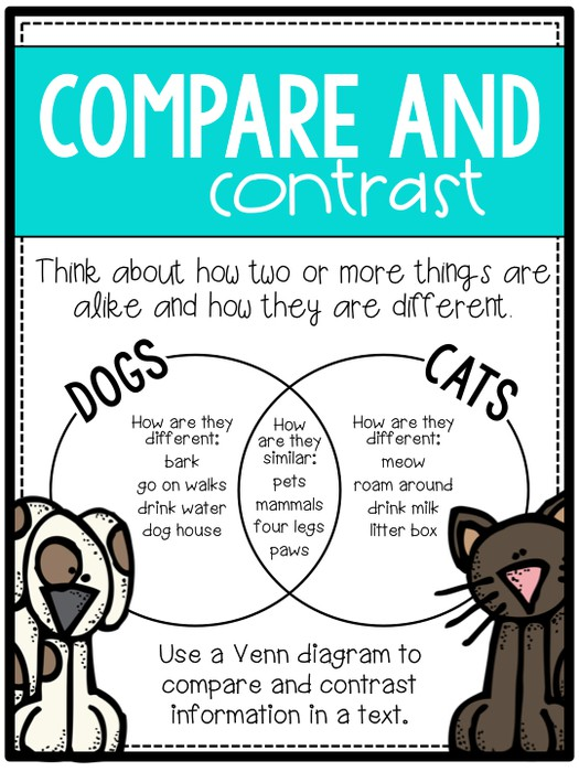 compare and contrast cartoon