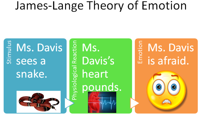 More on Emotion | Smore Newsletters