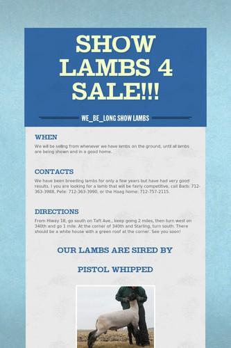 Show Lambs 4 Sale!!!