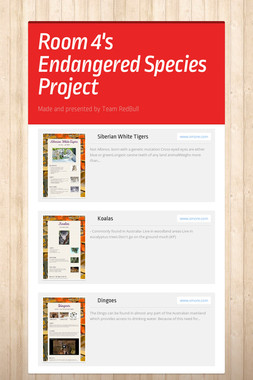 Room 4's Endangered Species Project