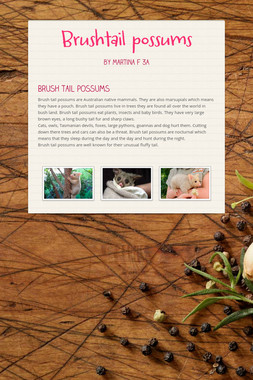 Brushtail possums