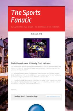 The Sports Fanatic