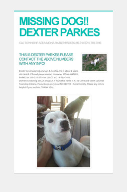 MISSING DOG!! DEXTER PARKES