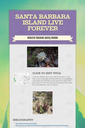 Santa Barbara Island Live Forever