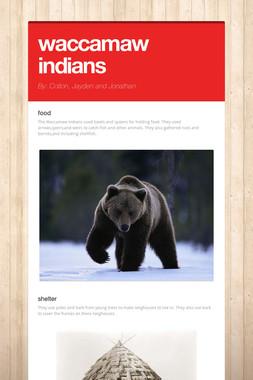 waccamaw indians
