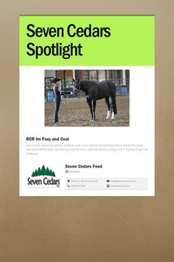 Seven Cedars Spotlight