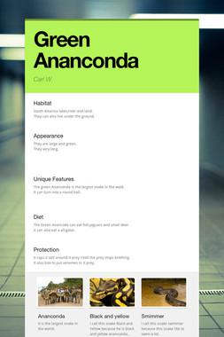 Green Ananconda