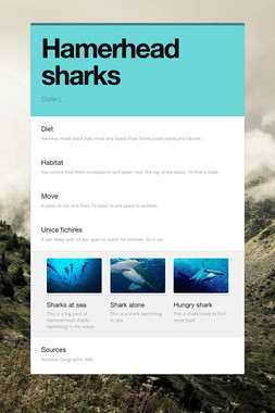 Hamerhead sharks