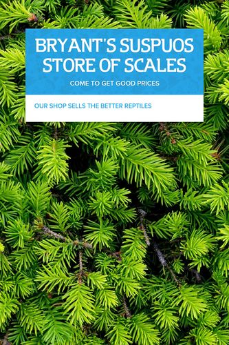 BRYANT'S SUSPUOS STORE OF SCALES