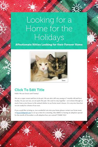 Looking for a Home for the Holidays