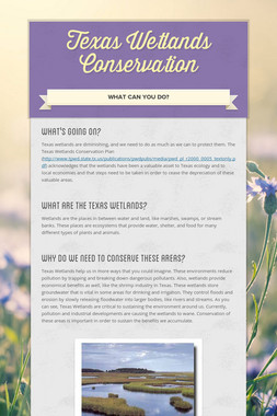 Texas Wetlands Conservation