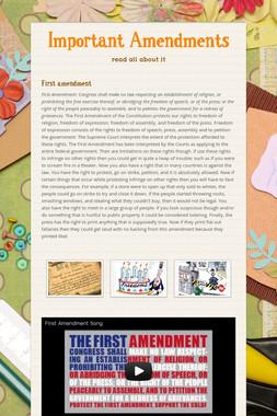Important Amendments