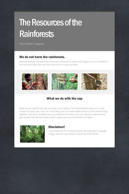The Resources of the Rainforests