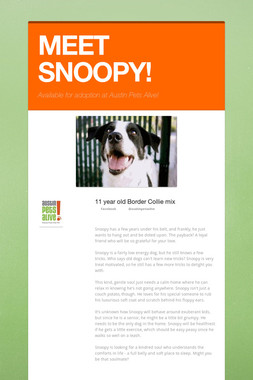 MEET SNOOPY!