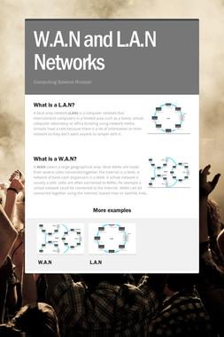 W.A.N and L.A.N Networks