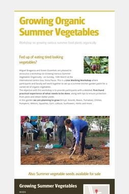Growing Organic Summer Vegetables