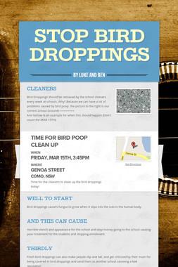 Stop Bird Droppings