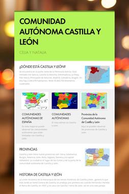COMUNIDAD AUTÓNOMA CASTILLA Y LEÓN