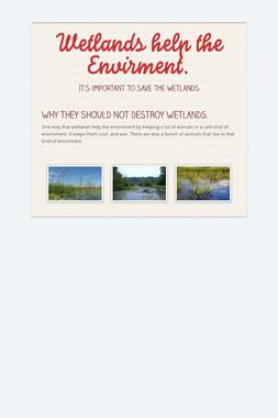 Wetlands help the Envirment.