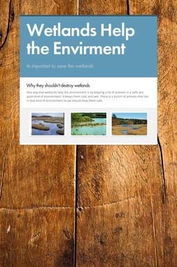 Wetlands Help the Envirment