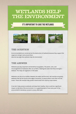 Wetlands Help the Environment