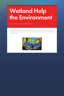 Wetland Help the Environment
