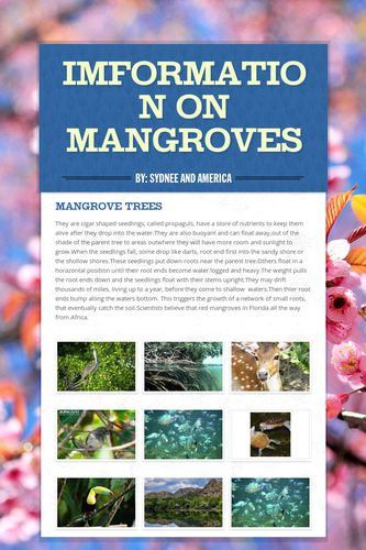 Imformation on Mangroves