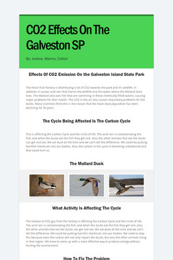 CO2 Effects On The Galveston SP