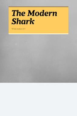 The Modern Shark