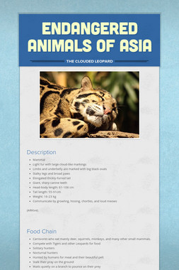 Endangered Animals of Asia