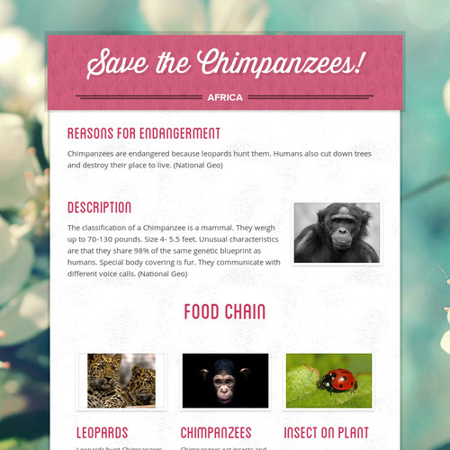 Save the Chimpanzees!
