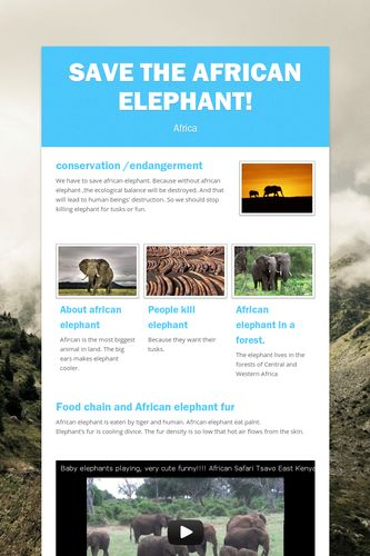 Save the African elephant!