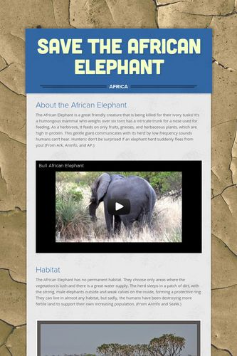 Save the African Elephant