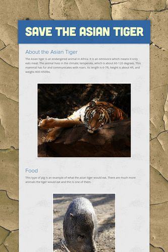 Save the Asian tiger