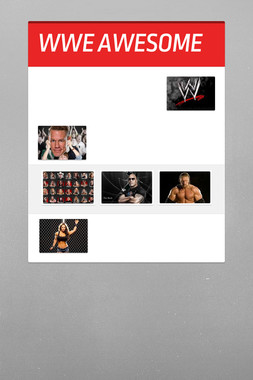 WWE AWESOME