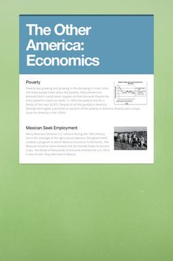 The Other America: Economics