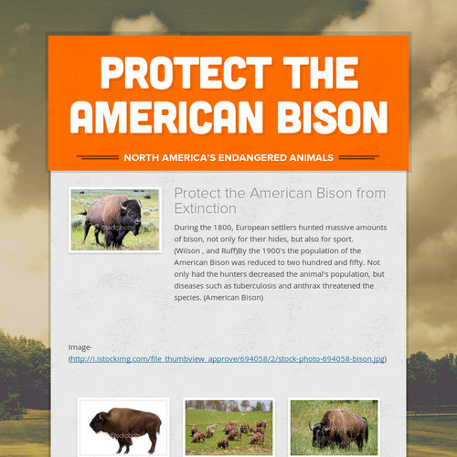Protect the American Bison