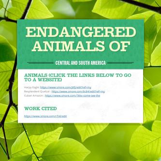 Endangered Animals of