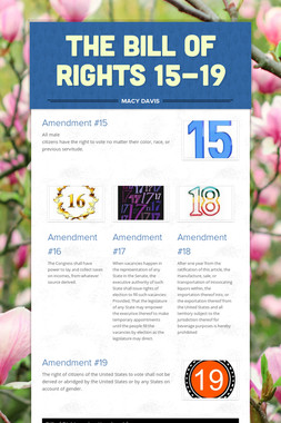The Bill of Rights 15-19