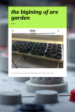 the bigining of are garden