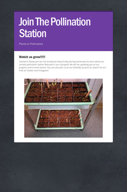 Join The Pollination Station