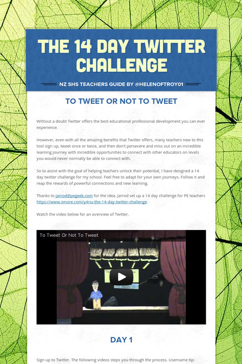 The 14 Day Twitter Challenge