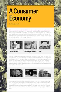 A Consumer Economy