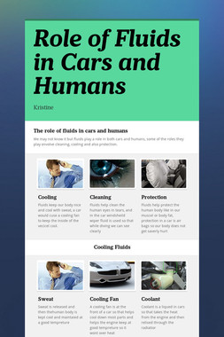 Role of Fluids in Cars and Humans