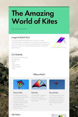 The Amazing World of Kites
