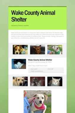 Wake County Animal Shelter