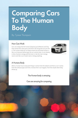 Comparing Cars To The Human Body