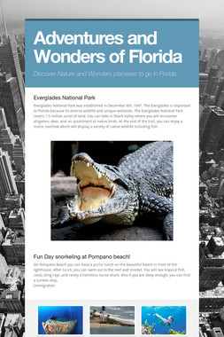 Adventures and Wonders of Florida